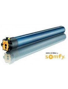 Somfy 1162023 - Moteur Somfy LT60 Vega 60/12