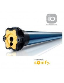 Somfy 1037689 - Moteur Somfy Oximo IO 10/17