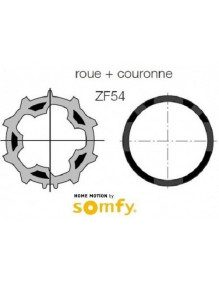 Bagues ZF54 moteur Somfy LT50 - LT50 CSI (roue et couronne)
